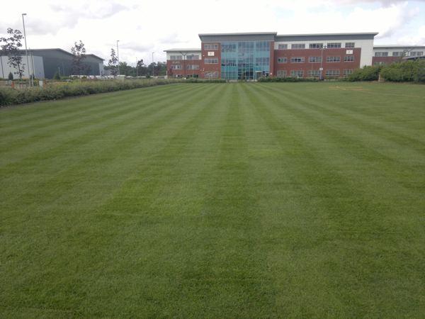 Commercial Landscaping Nottingham